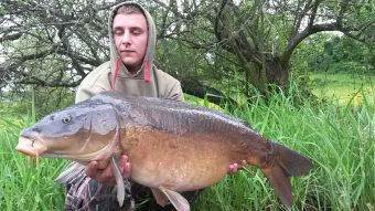 http://www.powercarp.com/blog/0b/bd/pict/photo10.jpg